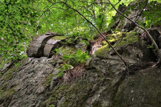 Víte, jaké neobyčejné zajímavosti můžete najít v Geoparku Broumovsko?