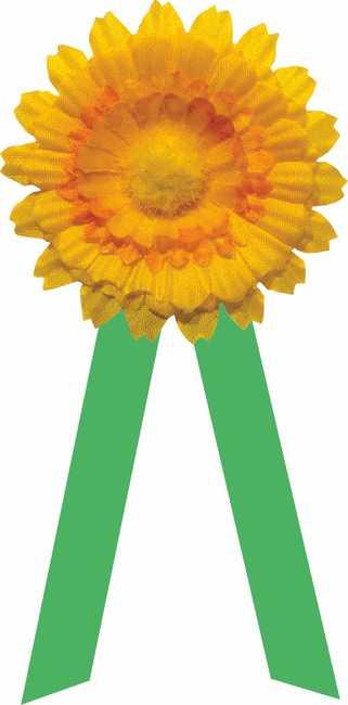 Podpořte 30. září Květinový den!