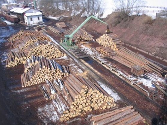 Broumovští lesníci si pochvalují spolupráci s Poláky